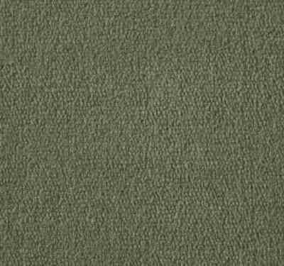 Exquisite Velvet Asparagus Carpet 3