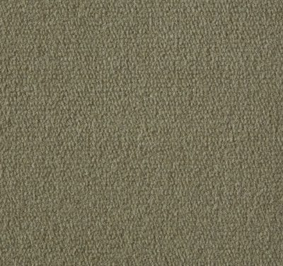 Exquisite Velvet Canvas Carpet 11