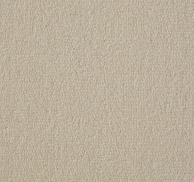 Exquisite Velvet Ivory Carpet 9