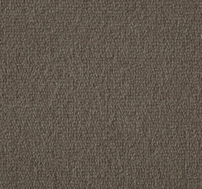 Exquisite Velvet Praline Carpet 12