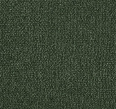 Exquisite Velvet Spruce Carpet 12