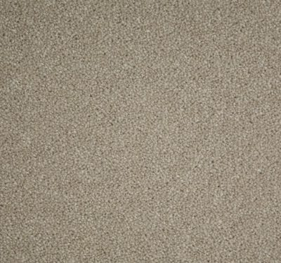 Home Counties Plains Stucco Carpet 8