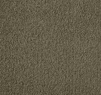 Silken Velvet Aniseed Carpet 8