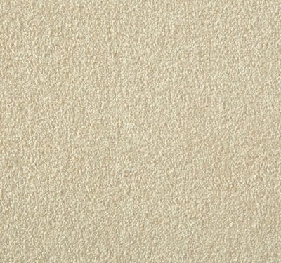 Silken Velvet Buttermilk Carpet 11