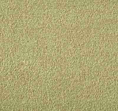 Silken Velvet Camel Carpet 10