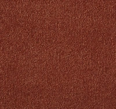 Silken Velvet Cello Carpet 12