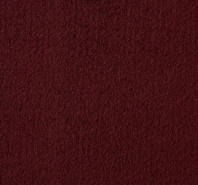 Silken Velvet Devotion Carpet 5
