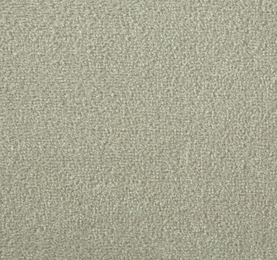 Silken Velvet Ecru Carpet 11