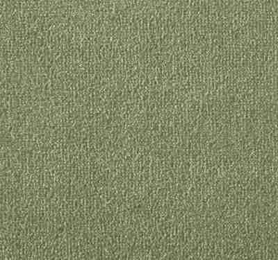 Silken Velvet Olivine Carpet 11