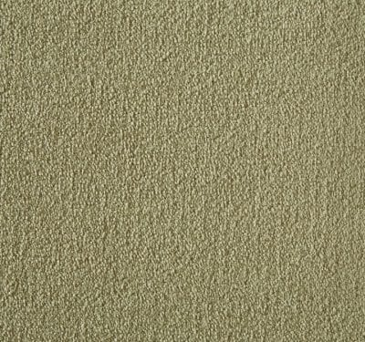 Silken Velvet Simplicity Carpet 10
