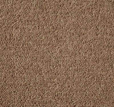 Ultima Twist Brandysnap Carpet 4