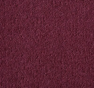 Ultima Twist Dogwood Carpet 7