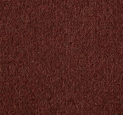 Ultima Twist Mocha Carpet 9