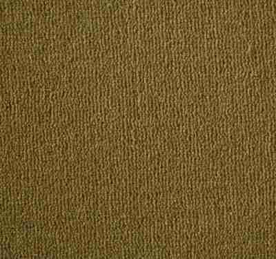 Westend Velvet Amber Carpet 4