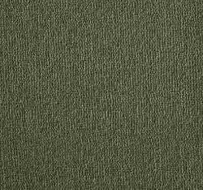 Westend Velvet Asparagus Carpet 13