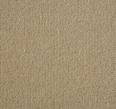 Westend Velvet Barley Carpet 13