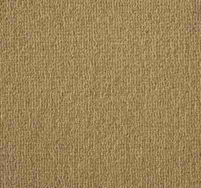 Westend Velvet Butternut Carpet 5