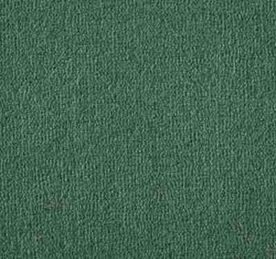 Westend Velvet Cedar Carpet 4