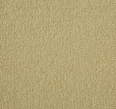 Westend Velvet Cider Carpet 2