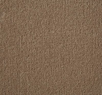 Westend Velvet Fawn Carpet 1