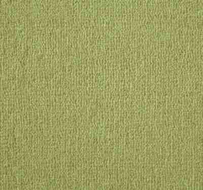 Westend Velvet Jasmine Carpet 2
