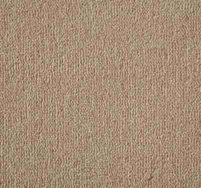 Westend Velvet Mango Carpet 7