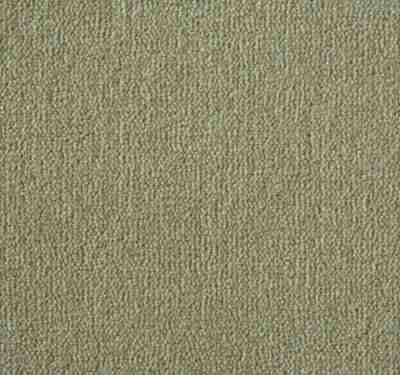 Westend Velvet Marshmallow Carpet 1