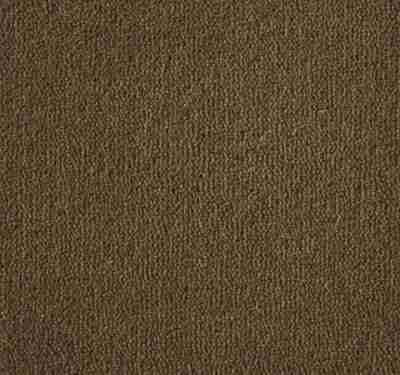 Westend Velvet Moccasin Carpet 4