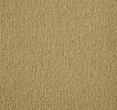 Westend Velvet Panama Carpet 3