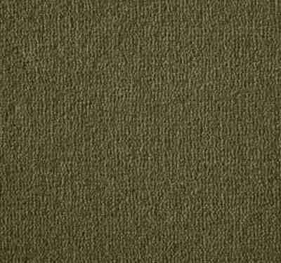 Westend Velvet Pecan Carpet 5
