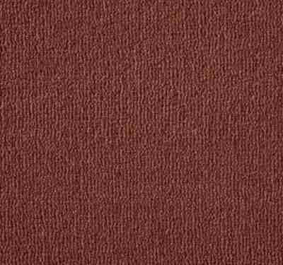 Westend Velvet Pimento Carpet 2