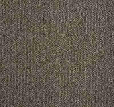 Westend Velvet Praline Carpet 7