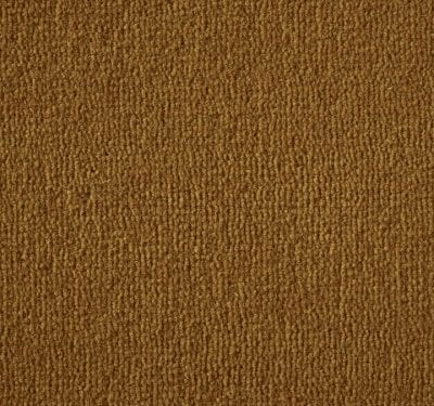Westend Velvet Pumpkin Carpet 3