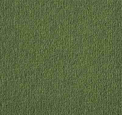 Westend Velvet Reseda Carpet 2