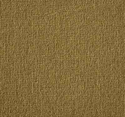 Westend Velvet Spring Carpet 12