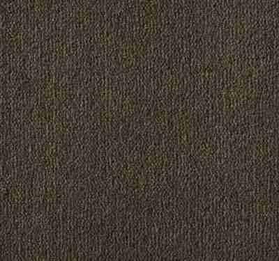 Westend Velvet Suede Carpet 6