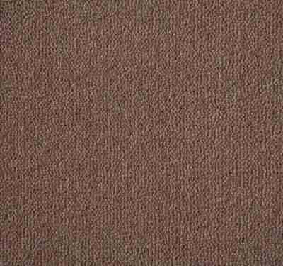 Westend Velvet Taupe Carpet 3