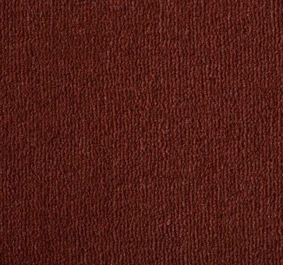 Westend Velvet Terracotta Carpet 12