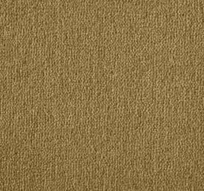 Westend Velvet Toast Carpet 1