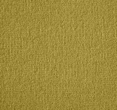 Westend Velvet Tumeric Carpet 7