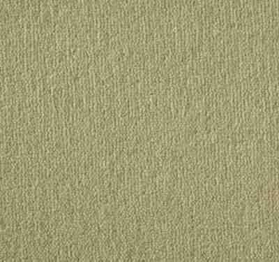 Westend Velvet Tumeric Carpet 10