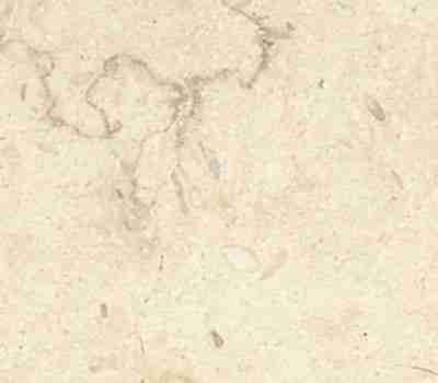 Crema Atlantide Stone 1