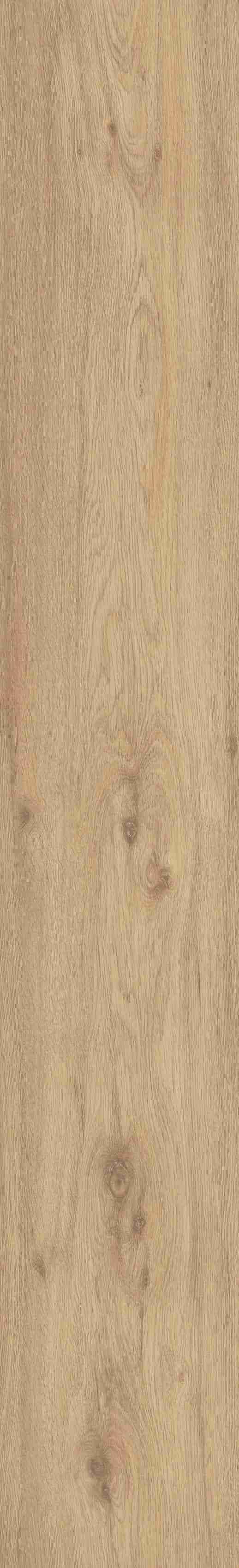 Helmond oak 2