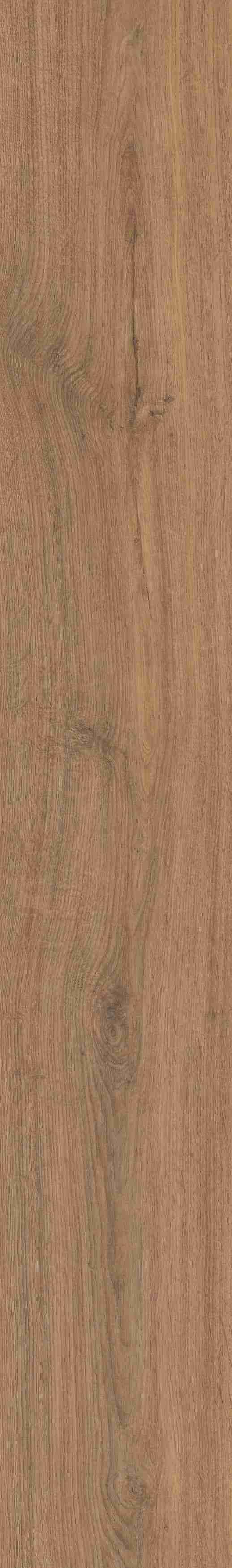 Tilburg oak vision 2