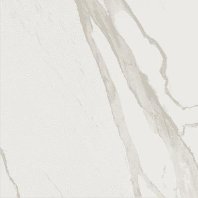 Albatros matte 3