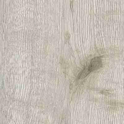 Fulda oak 11