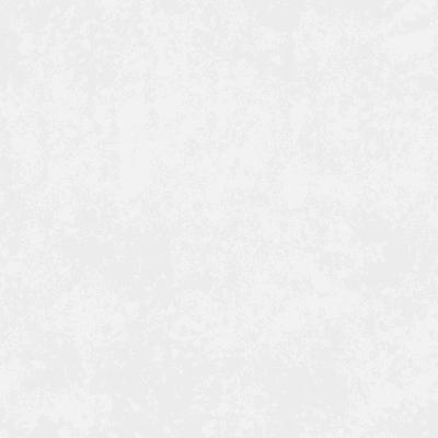 Nimes white 6