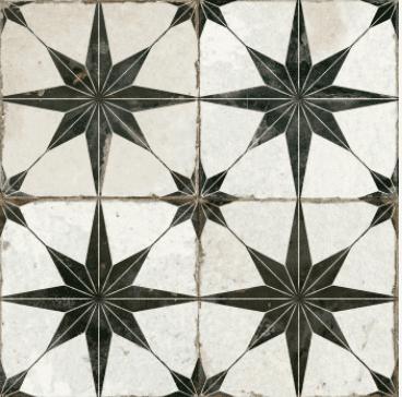 Star Negra 1